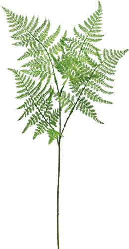 ASCA 造花アスパラガスファーン グリーン 全長:58cm