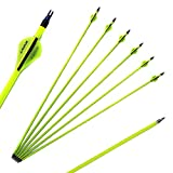 24 Inch Arrow 500 Spine Arrow Target Practice Arrow Hunting Arrow Carbon Arrows Compound Bow Recurve Bow Adult Youth Archery Indoor Outdoor Shooting Field Tip