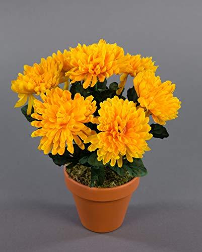 Seidenblumen Roß Chrysanthemenbusch 26cm gelb im Topf DP Kunstpflanzen Kunstblumen künstlichen Pflanzen Blumen Chrysantheme