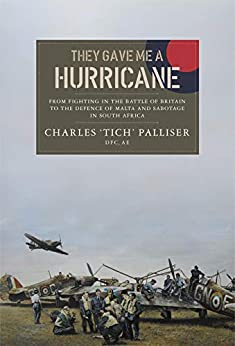 They Gave Me a Hurricane by [Charles Palliser]