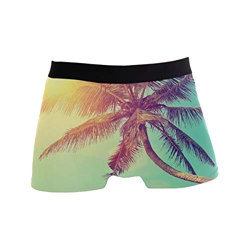 Janhe Boxershorts für Männer Atmungsaktiv Hawaii Tropical Sea Beach Palme Unterhose Unterwäsche Stretch Weich Schnell trocknend Sportlich inspirierte Mikrofaser