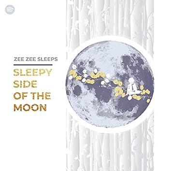 Sleepy Side of the Moon