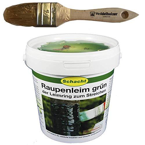 Schacht Raupenleim 1kg Eimer + Veddelholzer Marken-Pinsel 35mm Breit Leimringe für Obstbäume als Baumschutz Baumleimring zum streichen auch Insektenleim genannt