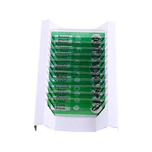 Hilitand 12pcs Plastic Prepared Microscope Slides of Animals Insects Flowers Plants Sample Specimens(Green)