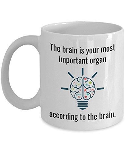 Funny Neuroscientist Mug – The Brain is Your Most Important Organ – Joke Neuroscience Coffee Cup Gag Gift - Neurology Doctor Neurosurgeon Scientist