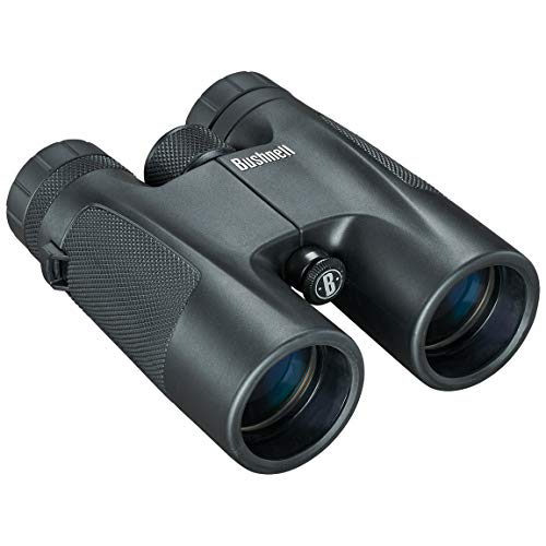 Bushnell 10x42mm PowerView - Prismático, negro