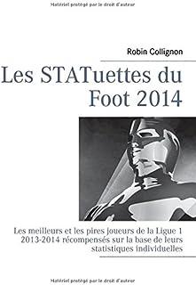 Les statuettes du foot 2014 : Les meilleurs et les pires joueurs de la Ligue-1, 2013-2014..