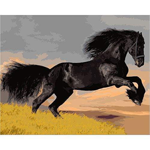 LPHMMD Schilderen op getallen, tekent schilderijen op nummers, Run Horse doe-het-zelf olieverfschilderij op nummers, kleuren op nummers, schilderen op nummers, uniek geschenk, canvas schilderij 40 * 60 cm