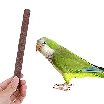 La Cabina 1 pc Perches Colorées Cage pour Oiseau Tiennent la Mouture Plate-Forme Griffe Jouet Perchoir pour Perroquet Perruche 1.5 * 20cm