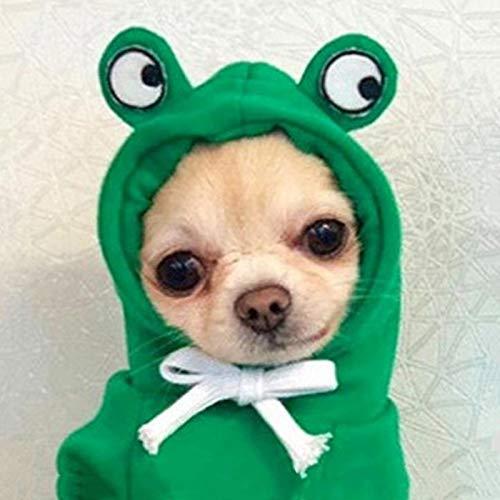 XATAKJJ Disfraz de Rana para Mascotas Disfraz de Perro y Gato Divertido Ropa de Navidad de Halloween para Mascotas Ropa de Invierno para Gatos Chihuahua Ropa para Perros, Rana, XS