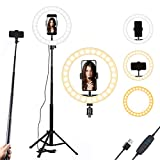 10 Inch Selfie Ring Light with...