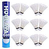 HOOLAVA Goose Feather Badminton Shuttlecocks, Nylon Badminton High Speed Shuttlecocks Balls Badminton Birdies 12PC for Outdoor and Indoor Sports