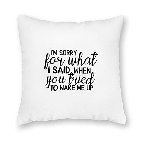 qidushop Funda de almohada de lona, con texto en inglés 'I'm Sorry for What I Said When You Tried to Wake Me Up', funda de cojín decorativa de lona de 45,7 x 45,7 cm, decoración del hogar para sofá