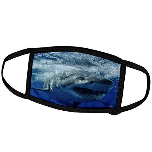 3dRose Kike Calvo Shark - Great White Shark - Face Masks (fm_10587_2)