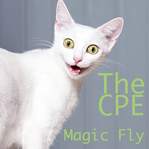 Magic Fly (House Remix) [Brutto Netto Katzen Werbung Song]