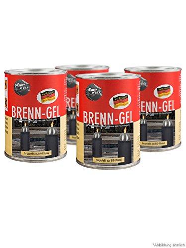 Pflanzwerk® Pflanzkübel Feuerkugel Premium BRENNGEL *Bio-Ethanol* *Rußfrei* *Rauchfrei* *Deutsche Qualitätsware*VE4