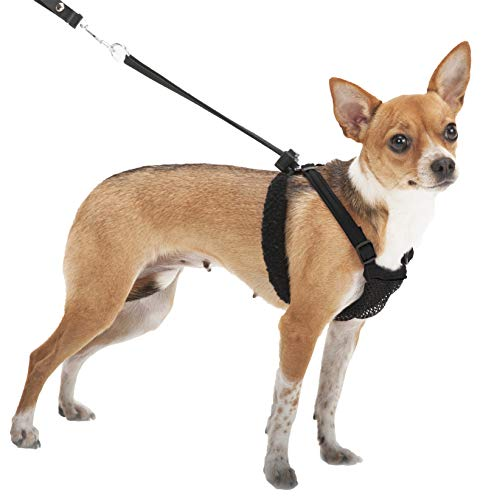 Sporn Dog Harness – No Pull and No Choke Humane Design, Non Pulling Pet Harness with Mesh Vest