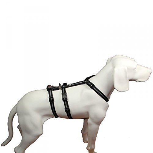 Feltmann NoExit Hundegeschirr® - ausbruchssicher, Panikgeschirr, schwarz Streifen, Bauchumfang 40-60 cm, 15 mm Bandbreite