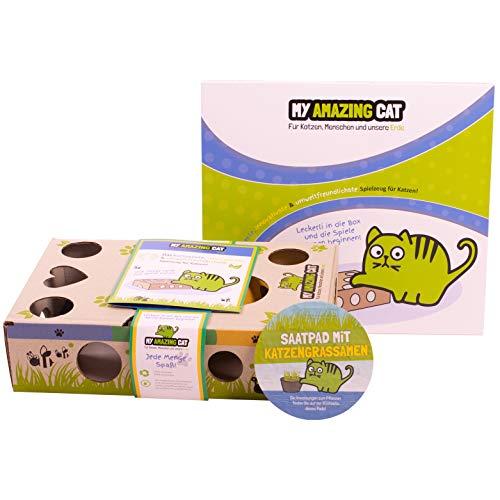 My Amazing Cat Interactief kattenspeelgoed met kattengras – beweegbare speelbox – intelligent behendigheidsspel – jagen – vangen – krassen