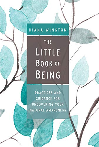 The Little Book of Being: Practices and Guidance for Uncovering Your Natural Awareness