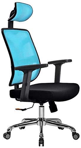 GAOLILI Sedia da Ufficio Sedia da Ufficio Poltrona in Metallo Schiena in Metallo Sedia da scrivania ergonomica con Supporto per poggiatesta/Supporto per Il Collo Regolabile (Color : C)