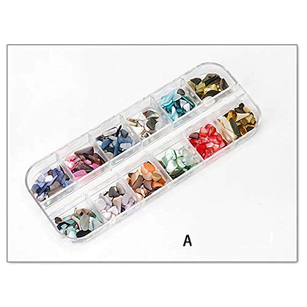 温度絶対のラケットナチュラル 貝殻 グラジエント シェル ネイルパーツ ネイルデコ デコレーション 3色選べ (01)
