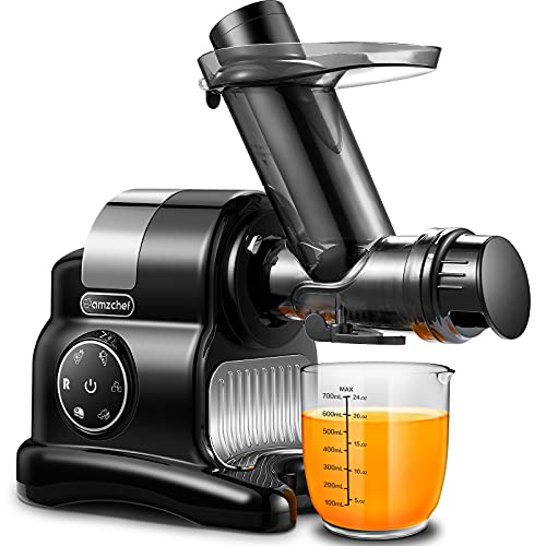 Masticating Juicer, AMZCHEF 5 in 1 multifunctional Juicer Machines,Slicer /Shredder Attachment with Stainless Steel, Baby Food Grinder,Professional Slow Juicer, Snow Cone Maker for Home and Party