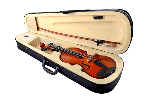 Blueberry V-10 (Imported) Acoustic Violin (4/4, Maroon)