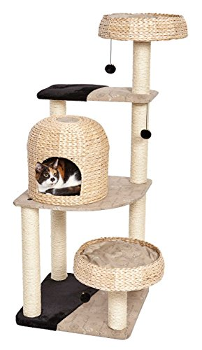 MidWest Homes for Pets Cat Tree | Biscayne Cat Furniture, 5-Tier Cat Tree w/Sisal Wrapped Support Scratching Posts & High Cat Look-Out Perch, Woven Rattan & Script, Large Cat Tree
