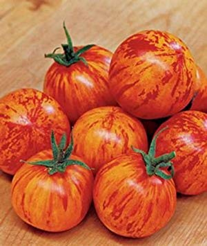 VISA STORE 20 Samen von Red Zebra Cherry Tomaten-Samen!
