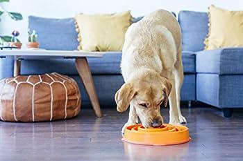 Dog Games Dog Bowl Slo-bowl Slow Feeder Coral Orange