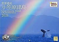 小笠原諸島 2021年 カレンダー 壁掛け