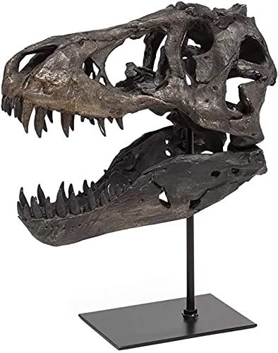 T-Rex Skull Statue, 1/10 Scale Model of Tyrannosaurus Rex Skull Resin Sculpture Lifelike Dinosaur Shape Statue Desktop Ornament Skull Size 33x20x24cm Without Bracket