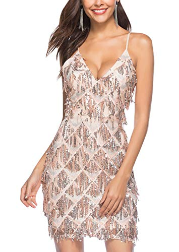 FEOYA Robe de Soirée Femme sans Manche Robe à Frange Paillettes Robe Année 20 Charleston Gatsby Femme Robe dans Latine Femme S Champagne