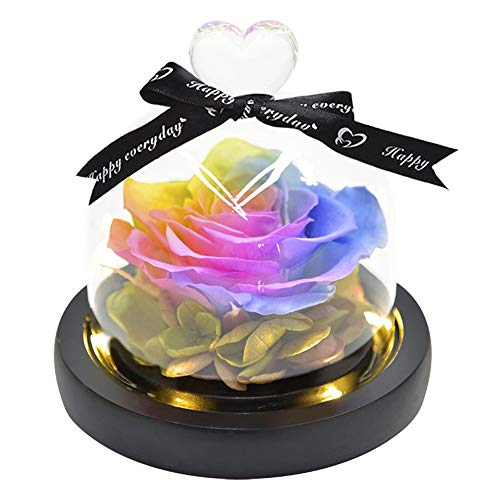 ThreeH Hermosas Flores Rosa Eterna Preservada Rosa Real en Cúpula de Vidrio Regalo Creativo para el Día de la Madre de San Valentín Cumpleaños de Navidad Cumpleaños Acción de Gracias Niñas