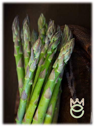 Asparago Argenteuil Asparagus officinalis Semi Semenze Ortaggi Orto Giardino