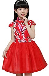 Kids Girls Frog Button Multi-Layer Tulle Pompon Dresses