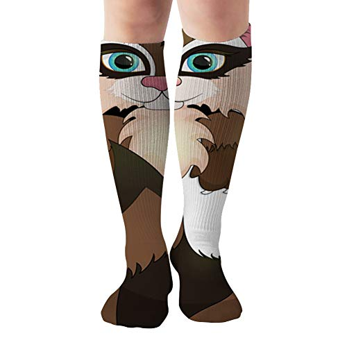 Cute Raccoon Climbs Out Paper Monitor Compression Socks Women & Men - Best For Running,Medical,Athletic Sports,Flight Travel, Pregnancy,19.68 Inch