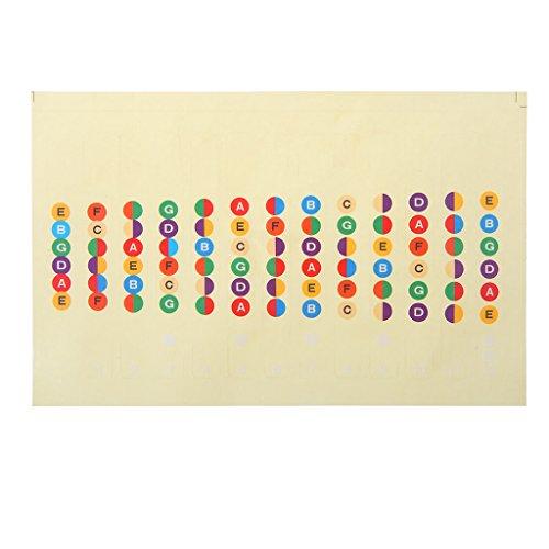 JOYKK Gitaar Accessoires Schaal Sticker Hals Vingerbord Fret Board Note Leer Praktijk - Multi kleuren