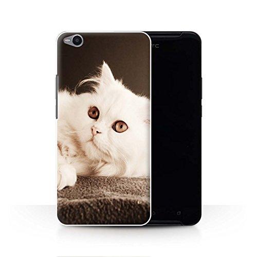 Stuff4® Hülle/Case für HTC One X9 / Perser Lange Haare Katze Muster Katze/Katzenrassen Kollektion