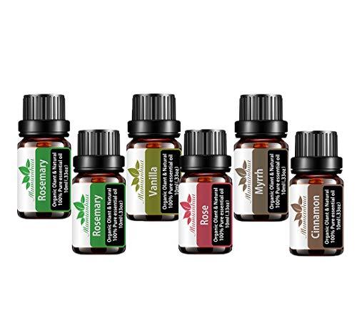 Mumianhua set di Olio essenziale bio, 6 x 10ml di oli essenziali puri per aromaterapia vegetale puro per diffusori, massaggio (rosmarino, rosa, ylang-ylang, cannella, vaniglia, mirra)