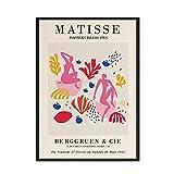 Matisse Poster Abstracto Colorido Coral Plantas Lienzo Pared Arte Matisse Desnudo Mujer Pared Pinturas Dormitorio Inicio Nórdico Estilo Arte Cuadro Decoracion 50x70cmx1 No Marco