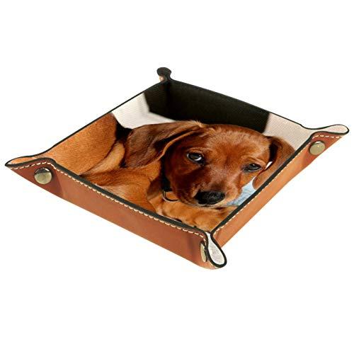 YATELI Caja de Almacenamiento pequeña, Bandeja de Valet para Hombre,Perro pequeño,Organizador de Cuero para Llaves de Caja de Monedas