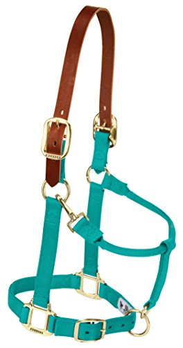 Weaver Leather Nylon Adjustable Breakaway Horse Halter, Average, Emerald Green