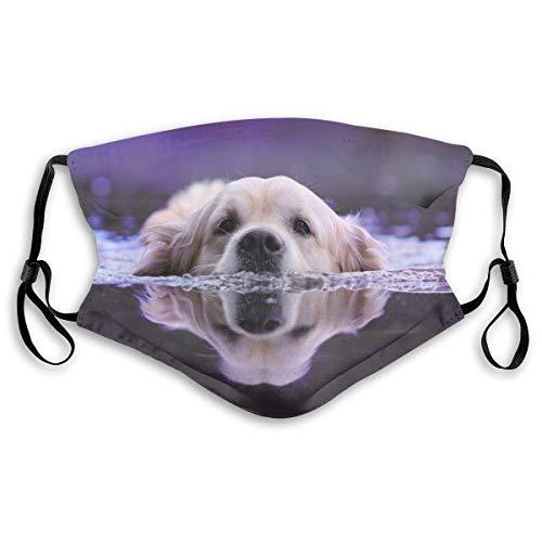 Golden Retriever Reflection Schwimmen Wasser Gesicht M-A-S-K mit Filtern, waschbar wiederverwendbar Schal Sturmhaube, für Damen Herren Erwachsene Jugendliche
