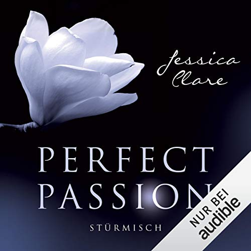 Stürmisch audiobook cover art