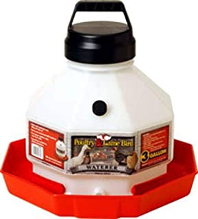 Best little giant poultry waterer Reviews