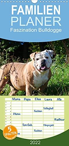 Faszination Bulldogge (Wandkalender 2022, 21 cm x 45 cm, hoch)