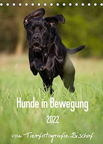 Hunde in Bewegung 2022 von Tierfotografie Bischof (Tischkalender 2022 DIN A5 hoch)
