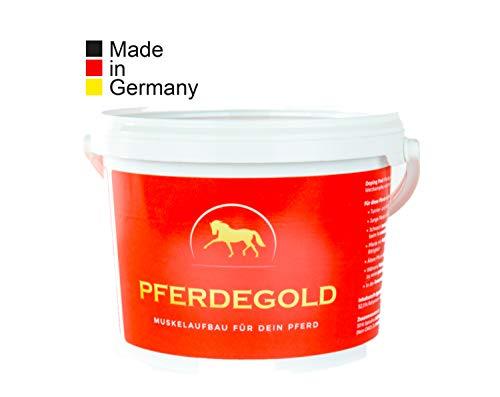 Meer im Trog : Pferdegold - Gold richtig für Muskelaufbau bei Pferden, dopingfrei